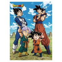 Dragon Ball Z: Battle of Gods Group 10 Wall Scroll Posters